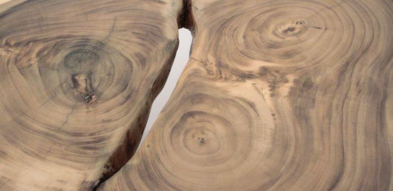 Table Basse Design Tronc en Bois d'Acacia n°1